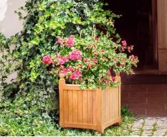 Large Garden Planter, Teak Versailles Planter