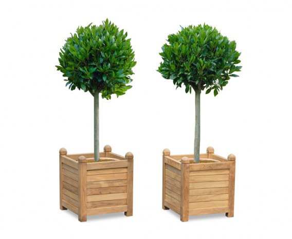 Set of 2 Zen Large Garden Planters, Teak