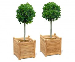 Set of 2 Zen Extra Large Garden Planters, Teak